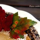 Raw Pie Closeup