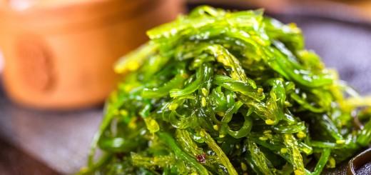 Seaweed is Powerful