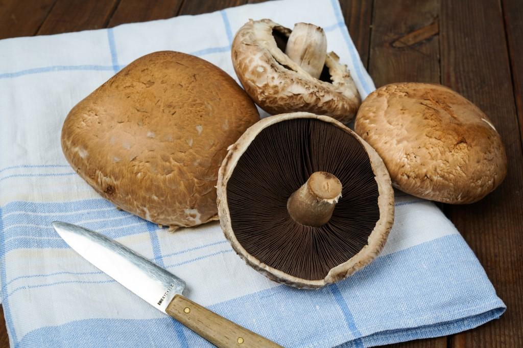 Healthy delicious autums vegetables, fresh portobello mushrooms