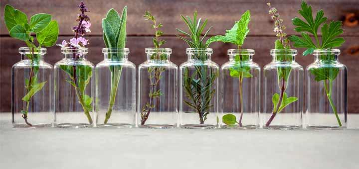 herbs-in-jars