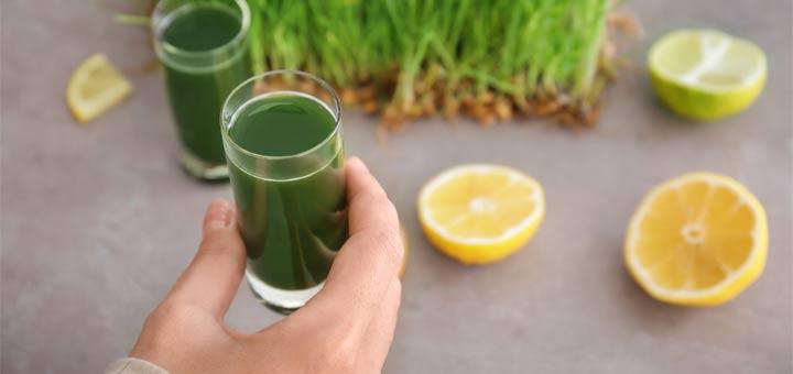 chlorophyll-shot-lemons