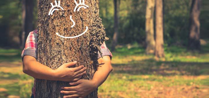 hugging-tree